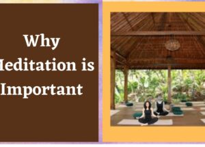 Important of Meditation in Human Life